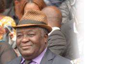 RDC-Politique : Les vétérans de l'UDPS rendent hommage au Feu  Étienne Tshisekedi wa Mulumba